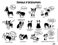 Translated by Sylvie www.facebook.com/dogdeclic  View or download larger version --> www.flickr.com/photos/lilita/6876624861/sizes/in/photostr...  More illustrations: doggiedrawings.net/post/842176625