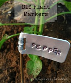 Botanical Labels Garden Markers | ... live to start planting gardens my garden always starts out well but