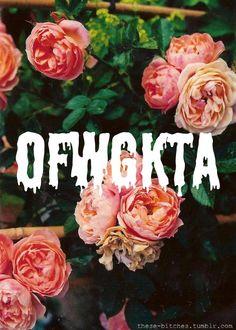 Ofwgkta-odd future-golf wang-wolf gang