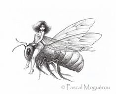 Fabulous illustrations Pascal Moguerou (205 works)
