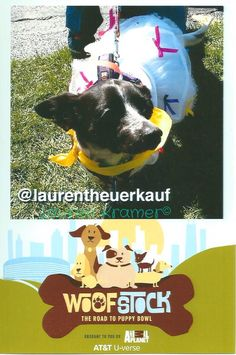 Check out my official Woofstock photo!