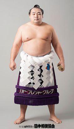 523 Best Sumo 大相撲 images in...