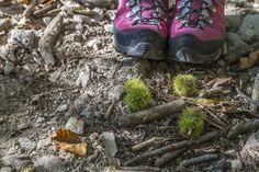 Im Schlitz - Indianersommer mit Soundtrack - Reisetipps Soundtrack, Hiking Boots, Sneakers, Native American, Switzerland, Travel Advice, Summer Recipes, Boyfriend, Mountains