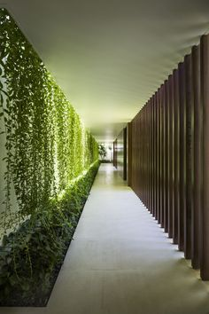 Completed in 2016 in Vũng Tàu, Vietnam. Images by Hirouyki Oki . There are reoccurring impressions on the spatial quality – the green of nature struck the eyes every early morning, the rustling of leaves each...