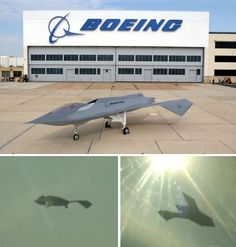 boeing bird of prey aircraft in flight