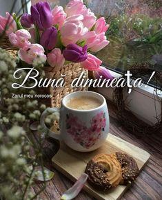 Good Morning, Tea Cups, Mugs, Modern, Board, Buen Dia, Trendy Tree, Bonjour, Tumblers