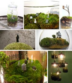 "A ""cemetarium"" is a cool Halloween take on the traditional moss terrarium garden."