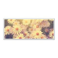 JP London PAN5030 uStrip White Daisies in Bloom High Resolution Peel and Stick Removable Wall Mural