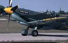 Supermarine 361 Spitfire LF9C aircraft picture