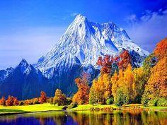 Doğadan onlarca güzel fotoğraf görmek ister misiniz? Başkalarının çekmiş olduğu ve yeşil doğadan onlarca güzel resim konumuza eklenmiştir.
