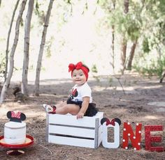 Minnie Mouse Theme Cake Smash Photoshoot Photo Session First birthday party decor decorations 2nd Birthday Photos, Birthday Girl Pictures, 1st Birthday Photoshoot, Girl First Birthday, 1st Birthday Parties, Birthday Ideas, Minnie Mouse Birthday Theme, Minnie Mouse Party, Minnie Mouse Cupcake Toppers