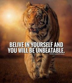 Home of world of quotes. Home of world of inspirational quotes for inspiration. Home of world of motivational stuff for motivation. Home of best things Inspirational Quotes About Success, Motivational Quotes For Life, Success Quotes, Positive Quotes, Inspire Quotes, Motivation Quotes, Tiger Quotes, Lion Quotes, Animal Quotes