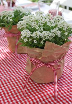 Floral Arrangement - use full pots of alyssum wrapped in craft paper with theme coordinating ribbon. Floral Arrangement - use full pots of alyssum wrapped in craft paper with theme coordinating ribbon. Backyard Party Decorations, Flower Decorations, Wedding Decorations, Wedding Ideas, Wedding Table, Wedding Themes, Trendy Wedding, Perfect Wedding, Burlap Decorations