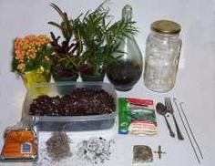 I keep being intrigued by terrariums on etsy and pinterest.  This site has lots of how-to info.