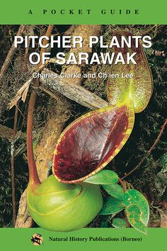 A Pocket Guide: Pitcher Plants of Sarawak by Charles Clarke and Ch'ien Lee