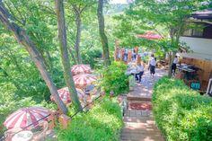 半日旅行へ出かけよう鎌倉の自然(森/庭/海)に触れるカフェレストラン7選