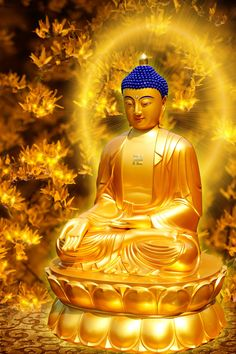 A Di Da Phat Quan The Am Guanyin Buddha 2223 by kwanyinbuddha on DeviantArt Amitabha Buddha, Gautama Buddha, Buddha Buddhism, Buddhist Art, Buddha Temple, Buddha Zen, Budha Art, Ganesh, Statues
