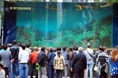 Un aquarium géant  à requins éclate en Chine [video] - http://www.2tout2rien.fr/un-aquarium-geant-a-requins-eclate-en-chine/