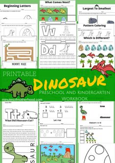 Free Printable 23 Page Dinosaur Workbook for Preschool and Kindergarten basic concepts