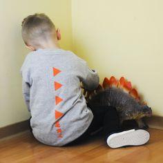 Dinosaur Stuffed Animal, Boys, Animals, Animales, Animaux, Senior Boys, Sons, Guys, Animal