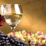 Red and white wines & grapes. Although - white wine can come from red grapes . it's only when the red skins are left in contact with the wine that its turn the wine red! Wine Drinks, Alcoholic Drinks, Wine Wallpaper, In Vino Veritas, Fine Wine, Wine Making, Soap Making, Wine Recipes, Wine Glass