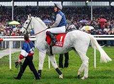The Best Racehorses Ever!