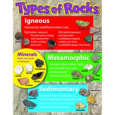 "Provide an introduction to igneous, metamorphic, and sedimentary rocks, plus minerals, with the photos on this chart. Durable. Extra Value: Reproducibles on back. 17"" x 22""."