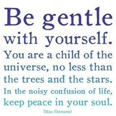 Be gentle with yourself.  You are a child of the universe, no less than the trees and the stars.  In the noisy confusion of life, keep peace in your soul.