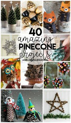 40 amazing pinecone projects to craft and diy! a girl and a glue gun