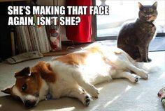 She's making that face again, isn't she?