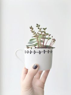 Kit with hand illustrated Teacup Planter from OHNORachio seen on Etsy
