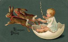 Egg sleigh