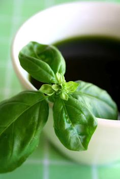homemade basil oil