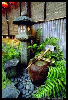 Japanese Garden Idea!