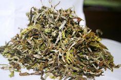 Margaret`s Hope (Spring Delight) white tea 1st flush 2013