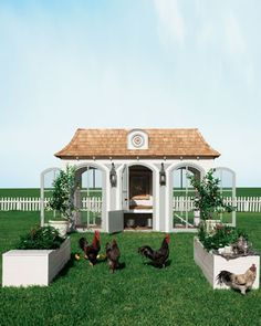 $100,000 Neiman Marcus chicken coop
