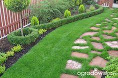 Mały ogród pod Białymstokiem - strona 5 - Forum ogrodnicze - Ogrodowisko