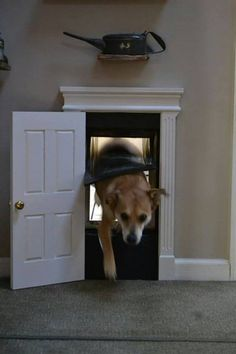 Cute indoor dog door, closed when not in use! This would be great to let the dogs go wherever in the house or keep them out if certain rooms. put lock on door to keep things out! Dog Rooms, Diy Stuffed Animals, Dog Houses, Cane Corso, Doge, Dog Life, Pet Care, Home Projects, Fur Babies