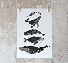 Blauwal, Grönlandwal, Pottwal, Buckelwal und Narwal - die Riesen der tiefen Meere wurden mit schwarzer Linoldruckfarbe auf Wasserbasis auf Büttenkarton mit leicht aufgerauter Oberfläche gedruckt....