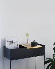 Brass tray for the plantbox. What a perfect match. Modern Interior, Modern Furniture, Home Furniture, Furniture Design, Steel Frame House, White Cafe, Plant Box, Lets Stay Home, Exterior Paint Colors For House