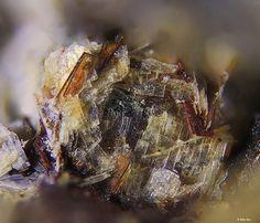 Emmerichite, Ba2Na(Na,Fe2+)2(Fe3+,Mg)Ti2(Si2O7)2O2F2, Günterblassite, (K,Ca,Ba)2(Fe,Ca,Mg,Na)[(Si,Al)13O25(OH)4]·7H2O· Rother Kopf, Roth, Gerolstein, Eifel, Rhineland-Palatinate, Germany. Copyright © Volker Betz (2013). IMA 2013-064 (SORO) and IMA 2011-032