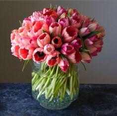 Tulips - my fav flowers Beautiful Flower Arrangements, My Flower, Fresh Flowers, Floral Arrangements, Beautiful Flowers, Beautiful Bouquets, Send Flowers, Deco Floral, Arte Floral