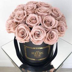 Imagem de rose, bouquet, and pink