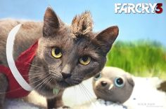 Far Cry 3 With A Cat