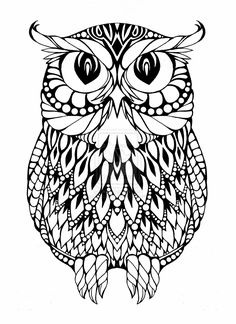 Owl coloring pages - Coloring Pages & Pictures - IMAGIXS