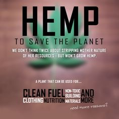 Hemp for a clean planet! It also holds amazing nutritional values. Check us out for hemp tinctures, vapes, oils, lotions, and more!