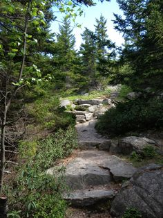 Acadia National Park trail - Beech Mountain Maine Travel Maine, Beech Mountain, American National Parks, Mount Desert Island, Park Trails, Acadia National Park, Trip Planning, Places To Travel, Hiking