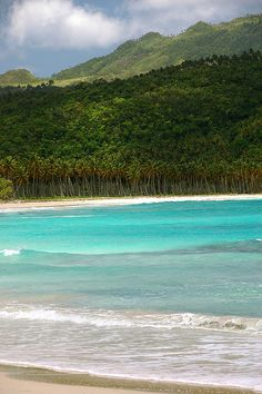 Turquoise water on the secluded Playa Rincon, Northeast Dominican Republic.