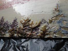 Panoramic plate collograph