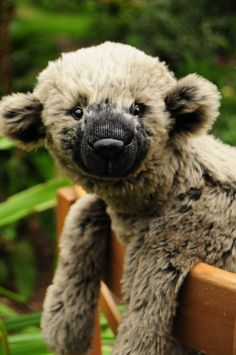 Gilbert(an original mohair teddy bear by BigFeetBears)